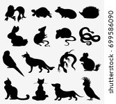 vector collection of pets... | Shutterstock .eps vector #699586090