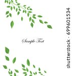 branches and green leaves | Shutterstock .eps vector #699601534