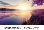 magnificent sunny landscape.... | Shutterstock . vector #699632944