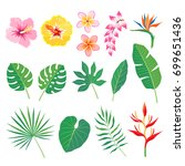 set of tropical leaves and... | Shutterstock .eps vector #699651436