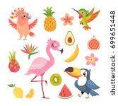Stock vector set of cute cartoon tropical birds and fruit isolated on white background 699651448
