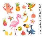 set of cute cartoon tropical... | Shutterstock .eps vector #699651448