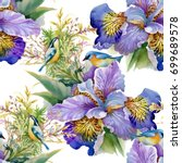 watercolor purple flowers and... | Shutterstock . vector #699689578