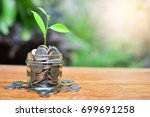 coins growth to profit concept...   Shutterstock . vector #699691258