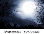 horror background | Shutterstock . vector #699707338