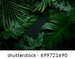 real leaves with white copy... | Shutterstock . vector #699721690