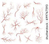 cartoon vein blood set concept... | Shutterstock .eps vector #699767593