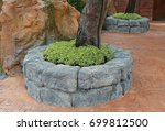 Design Stone Tree Pot In The...