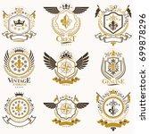 vector classy heraldic coat of... | Shutterstock .eps vector #699878296