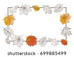 autumn frame with leaves of... | Shutterstock .eps vector #699885499
