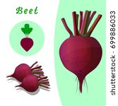 red beet on the basis of... | Shutterstock .eps vector #699886033