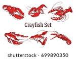 Set Of Vector Crayfish...