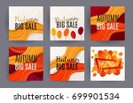 big autumn sale design. set of... | Shutterstock .eps vector #699901534
