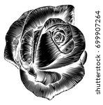 a rose flower in a vintage... | Shutterstock . vector #699907264