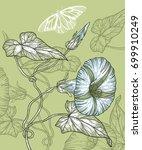 vector floral illustration in... | Shutterstock .eps vector #699910249