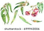 watercolor hand painted set... | Shutterstock . vector #699943006