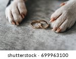 dog with wedding rings. boston ... | Shutterstock . vector #699963100