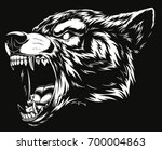 vector illustration head... | Shutterstock .eps vector #700004863