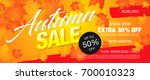 autumn sale template banner ... | Shutterstock .eps vector #700010323