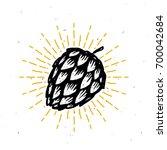 vintage hop  illustration  | Shutterstock .eps vector #700042684