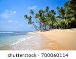 coast of the indian ocean in... | Shutterstock . vector #700060114