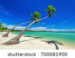 palm trees over white beach on... | Shutterstock . vector #700081900