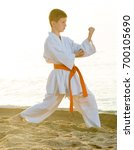 young boy practising karate... | Shutterstock . vector #700105690