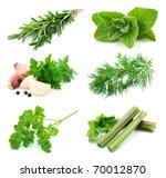 collage of  green and juice... | Shutterstock . vector #70012870