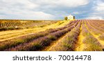 Chapel With Lavender Field ...