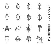 simple set of leaf related... | Shutterstock .eps vector #700177189