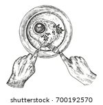 fried eggs in a plate vector....   Shutterstock .eps vector #700192570