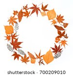 autumn leaves collection on... | Shutterstock . vector #700209010