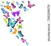 beautiful color butterflies set ... | Shutterstock .eps vector #700209070
