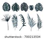 exotic leaves set. vector. | Shutterstock .eps vector #700213534