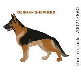 isolated german shepherd dog on ... | Shutterstock .eps vector #700217860