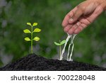 farmer's hand watering a young... | Shutterstock . vector #700228048