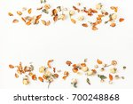 autumn composition. border made ... | Shutterstock . vector #700248868