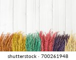 paddy rice variety of colorful... | Shutterstock . vector #700261948