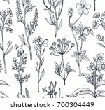 vector seamless pattern with... | Shutterstock .eps vector #700304449