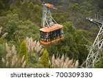 bogota  colombia   ca. april... | Shutterstock . vector #700309330