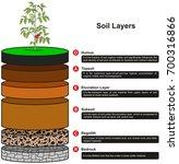 soil layers infographic diagram ... | Shutterstock .eps vector #700316866