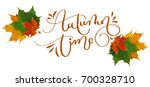 calligraphy lettering text... | Shutterstock . vector #700328710