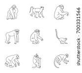 jungle monkey icon set. outline ...   Shutterstock .eps vector #700331566