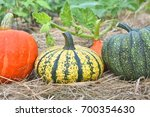Winter Squashes And Pumpkins...