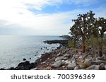 the shoreline of santa fe... | Shutterstock . vector #700396369
