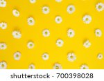 floral pattern of white... | Shutterstock . vector #700398028