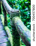 Small photo of Wooden handrail in Doi Inthanon national park, Thailand.