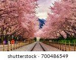 gyeonghwa station during sakura ... | Shutterstock . vector #700486549