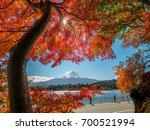 mount fuji  japan from lake... | Shutterstock . vector #700521994