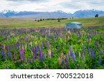 landscape at lake tekapo and... | Shutterstock . vector #700522018